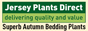 View this item on the Jersey Plants Direct website