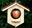 Wildlife & Bird Care - Autumn is the perfect time for putting up wildlife nesting boxes and bird feeders.